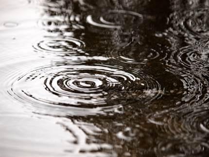 梅雨の波紋