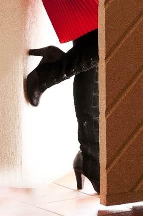 蚊の侵入は玄関だけじゃない!蚊の侵入の完全対策方法!