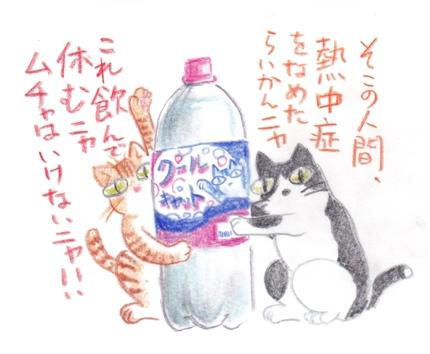 熱中症対策を勧めるネコ