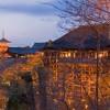 京都でもピカイチのライトアップ!清水寺の紅葉は時間が重要!