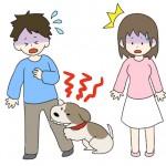 夢占いシリーズ!犬に噛まれる夢の意味には最悪の結末が…!