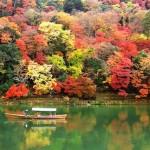 紅葉狩りで世界遺産を一巡り♪関東のドライブ観光ルートを御紹介☆